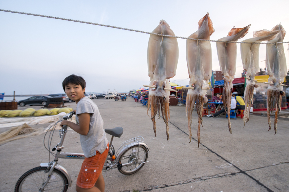 I was hanging out by this close-line-style drying squid in   Sokcho   because it was an interesting subject. This kid was curious in a different interesting subject, which had orange hair and a big camera.