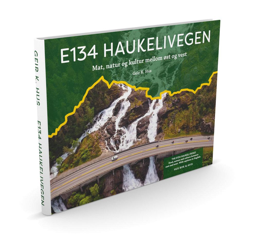 E134 Haukelivegen bokbilde.jpg
