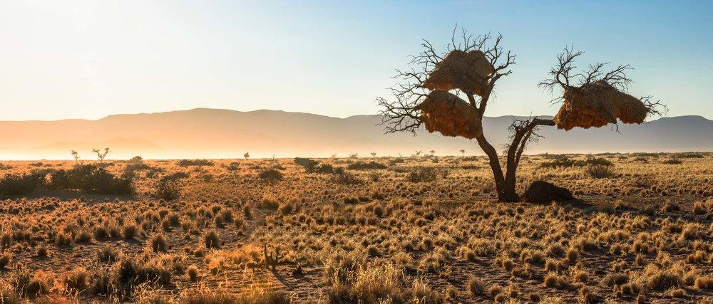 09_Namibia_Ethnologies.jpg
