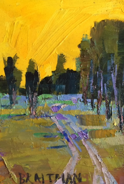 Yellow Sky II 7X5 $250.jpg