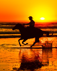 20100923_Pismo_Horses-90-Editpaint.jpg