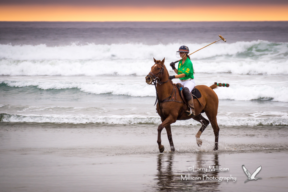 horses_on_the_beach-07613.jpg