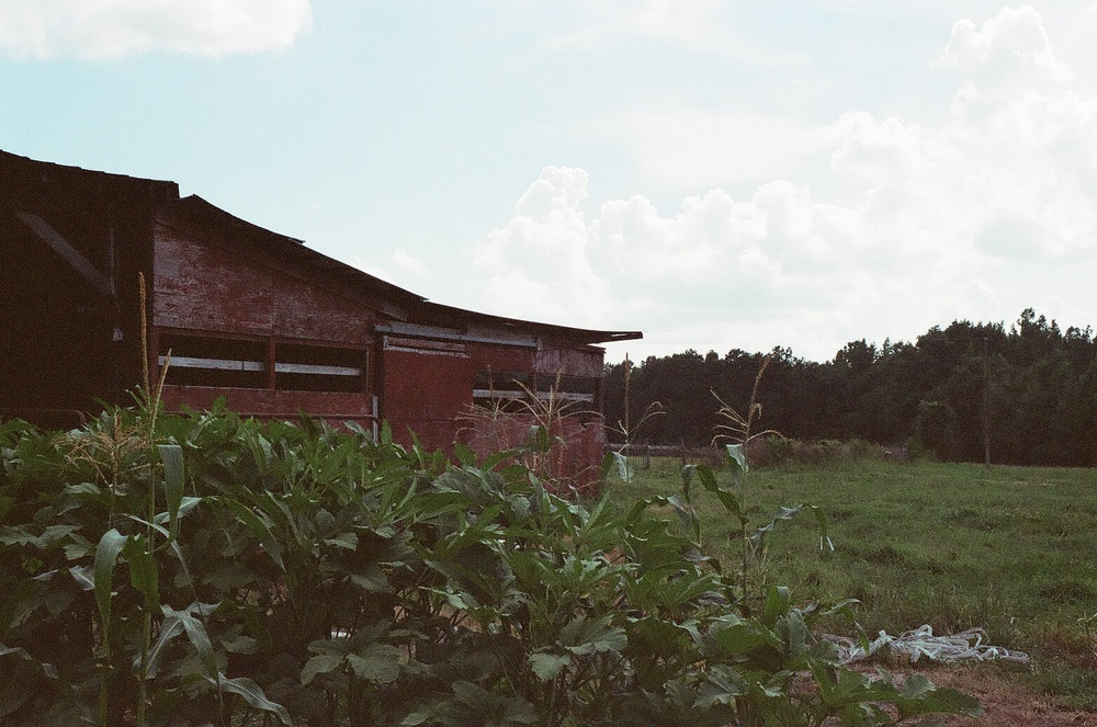 Red barn and crops