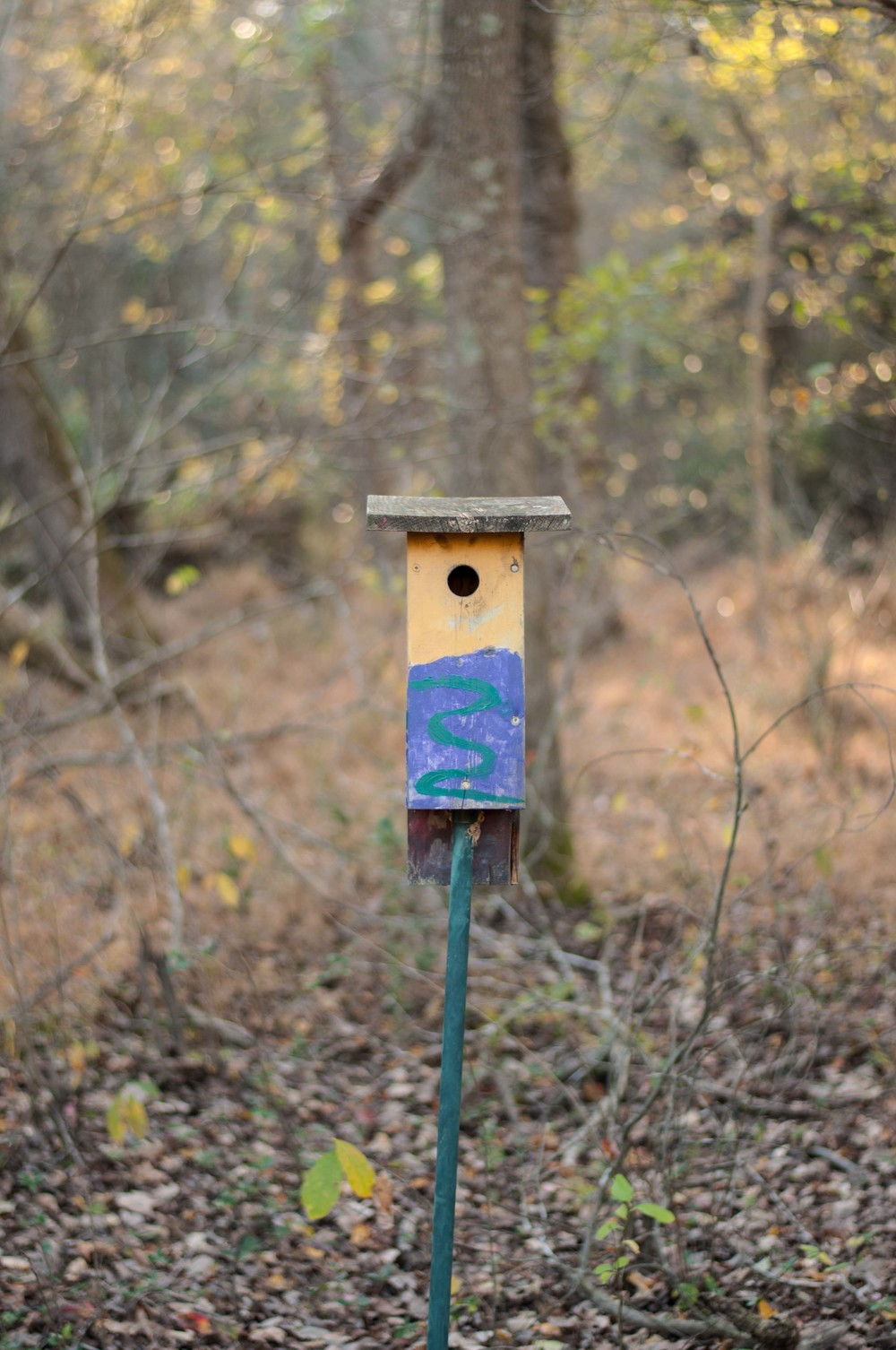 bass lake bird houses_5.jpg