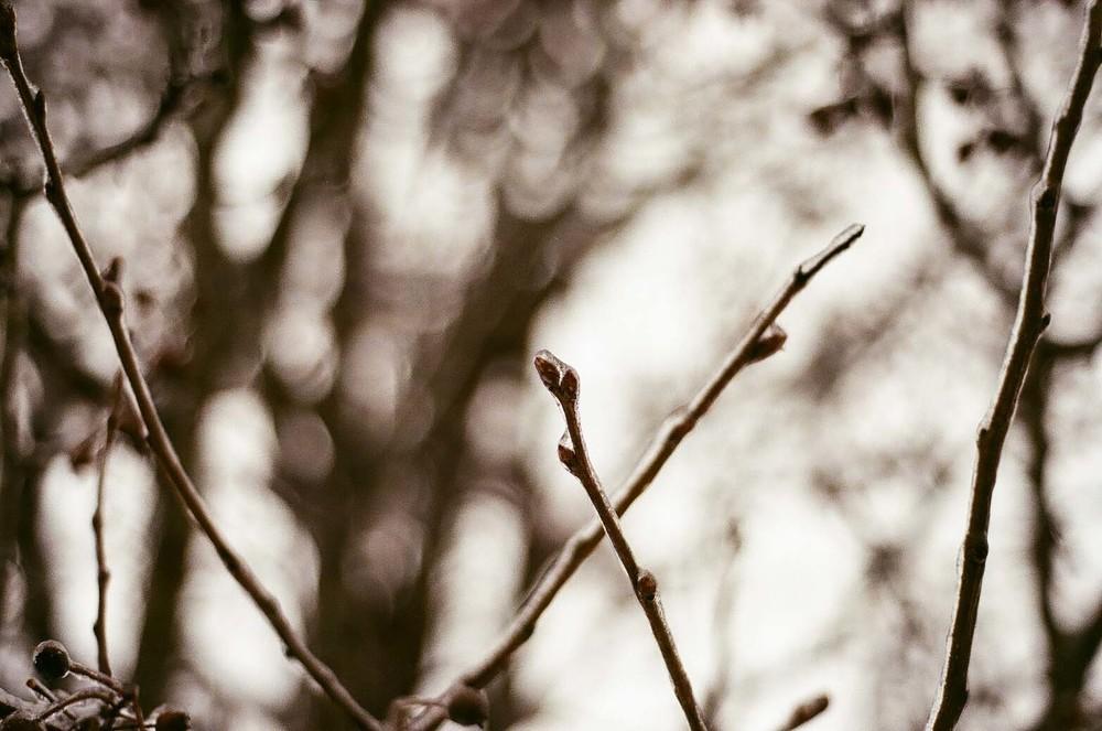 film 16_34.jpg