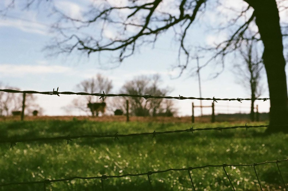 film 16_122.jpg