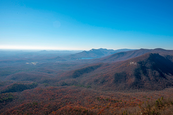 At the top of Caesars head.