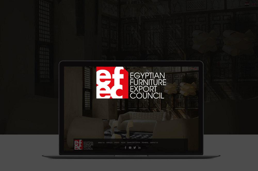 EFEC    Website