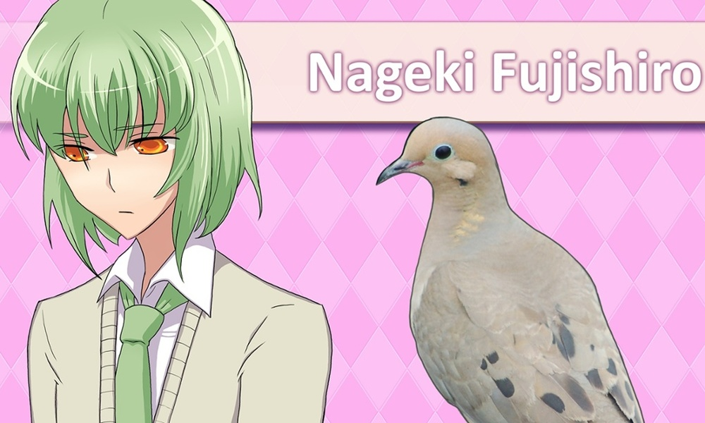 11/09/2015 Ever wanted a bird for a boyfriend? You can, in the wild world of Japanese dating sims
