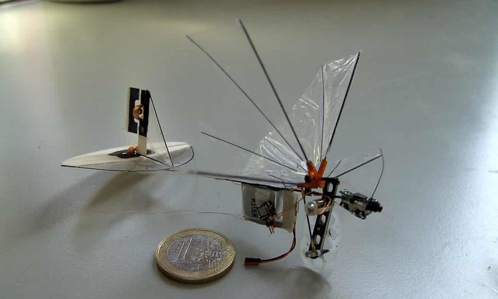 2018-10-26  Insect-inspired drones and enviro-gamers