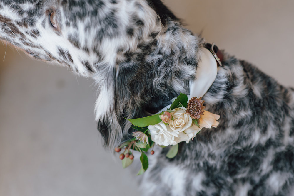 ann-arbor-art-center-wedding-5