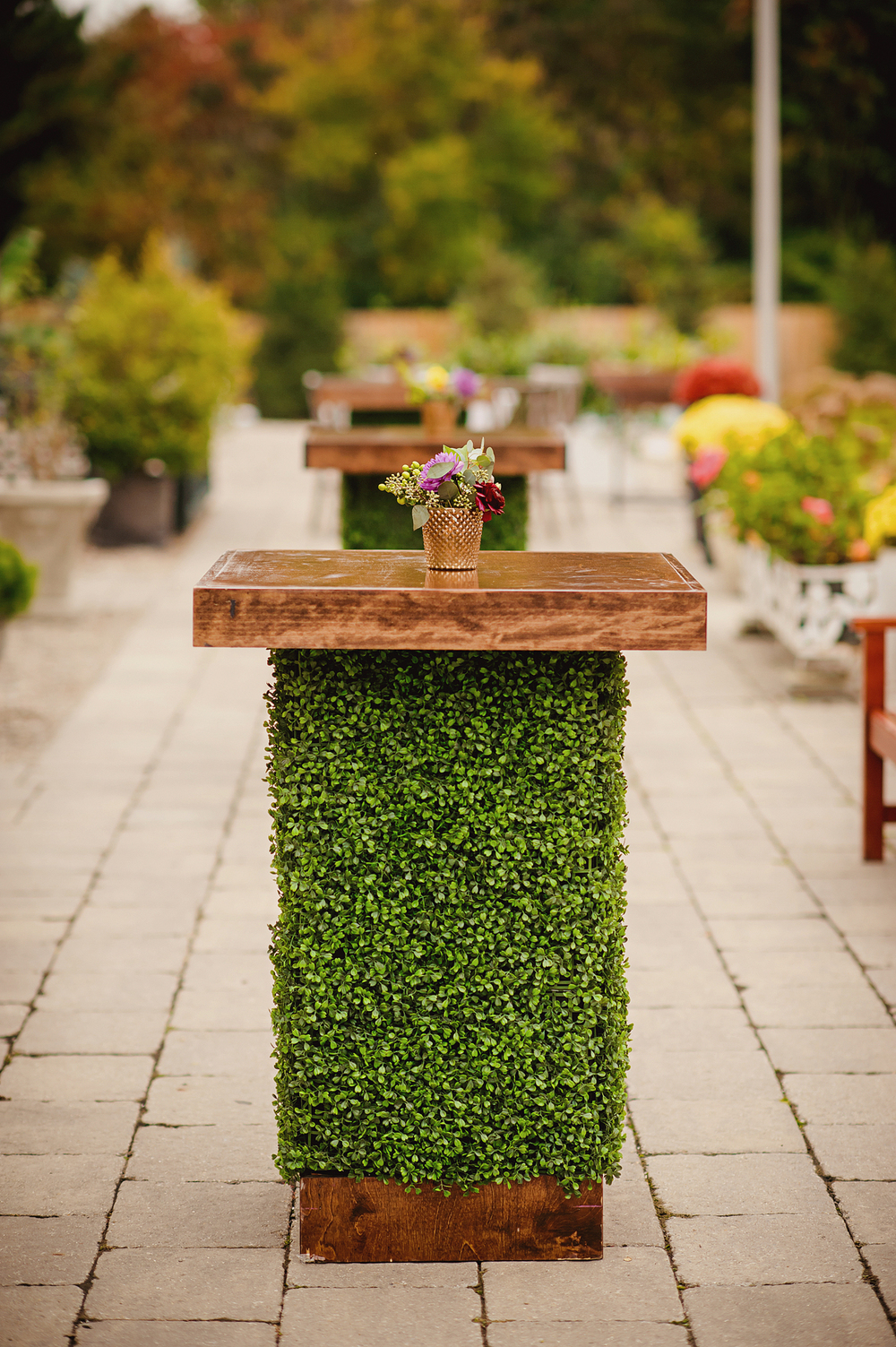 planterra-conservatory-bloomfield-wedding-8
