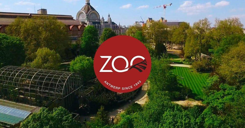 Zoo Antwerpen.jpg