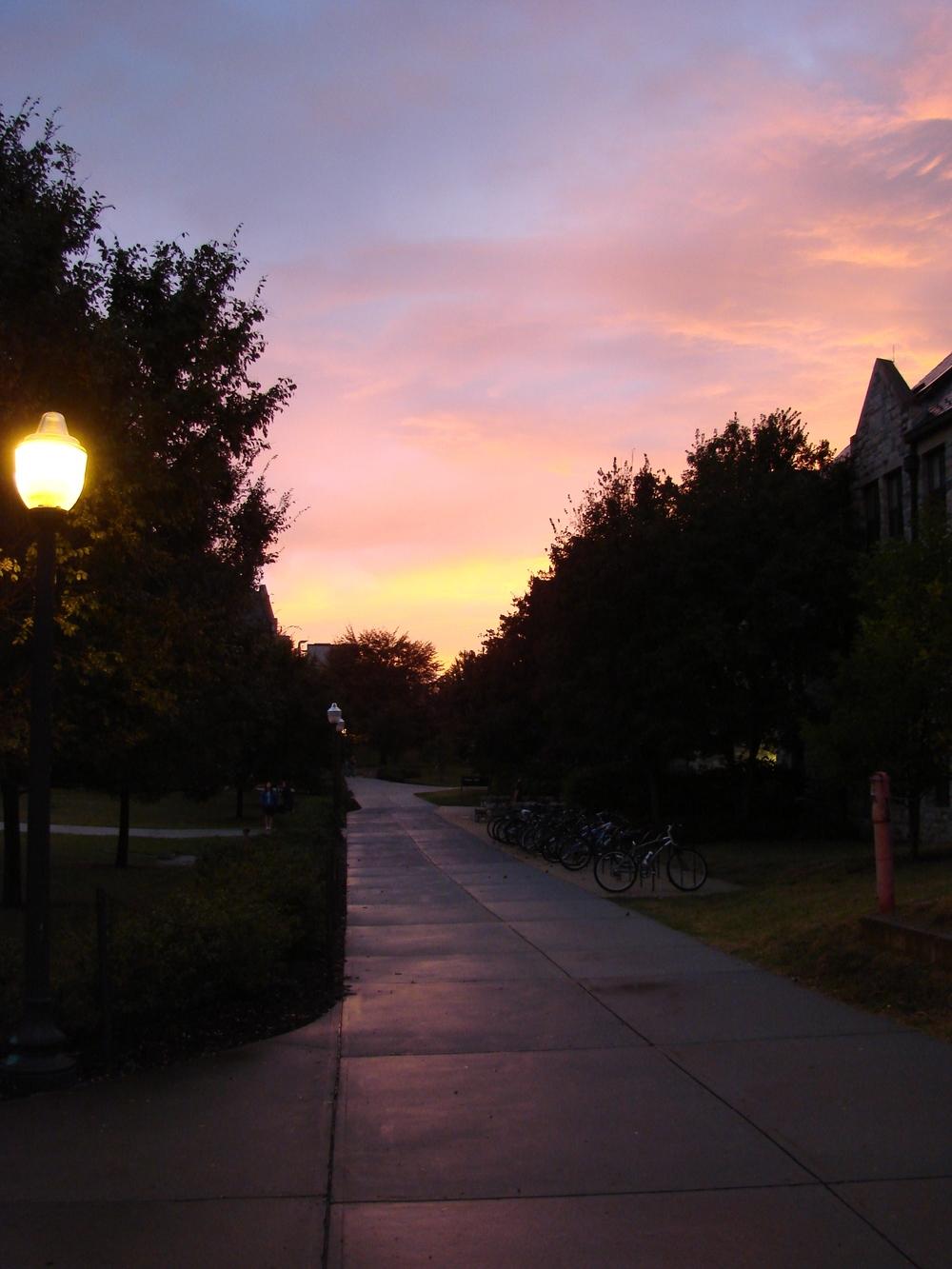 Campus after rain 10-19-2007 017.jpg
