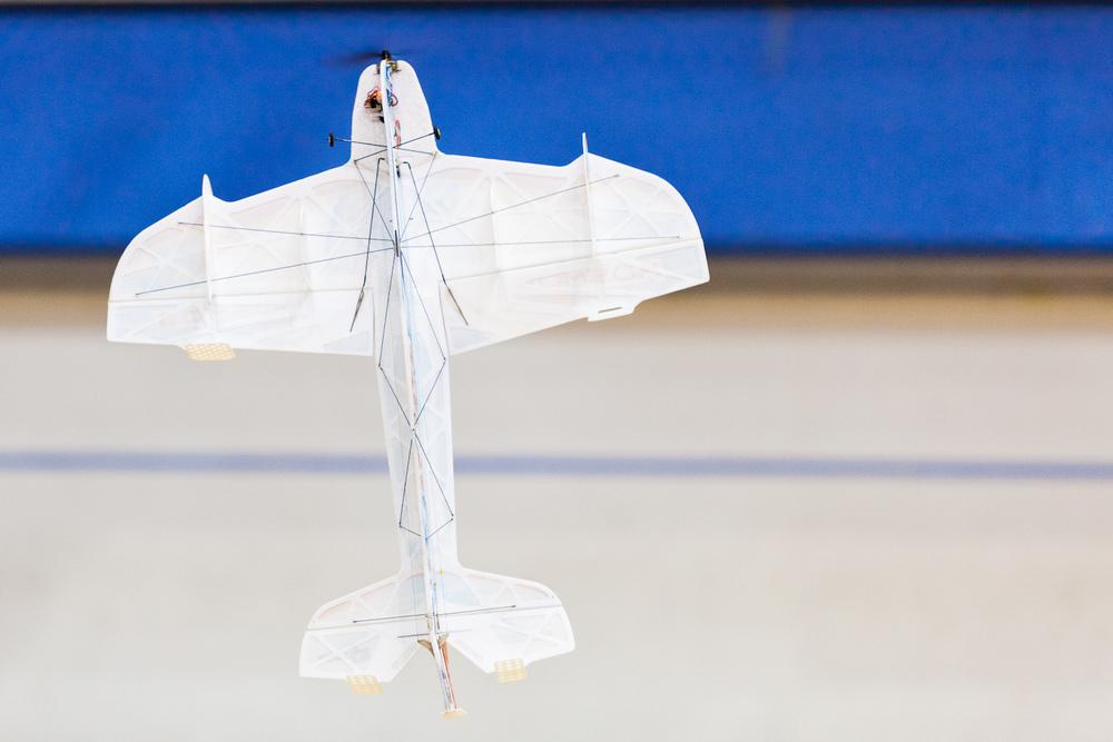 flight-7.jpg