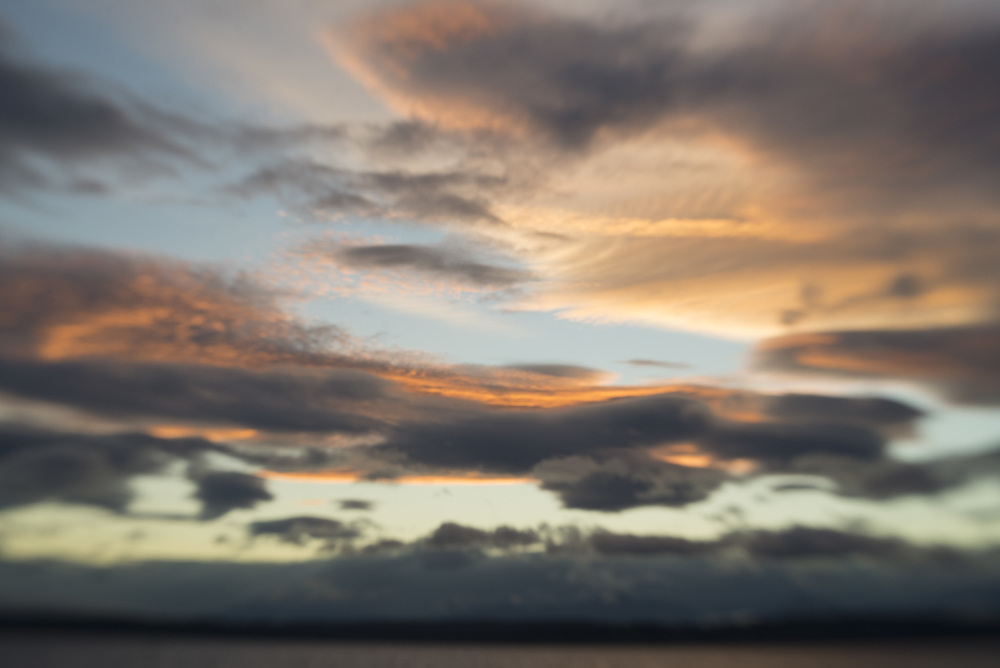 sunsetseattlemagnolia.jpg