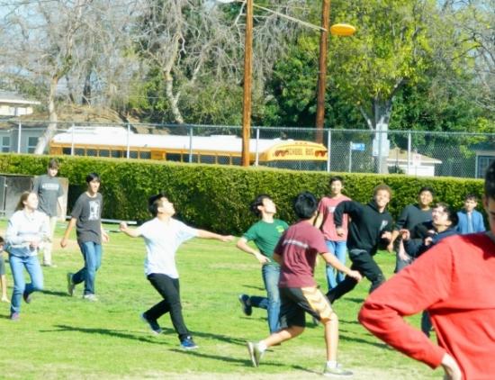 ultimate frisbee.JPG