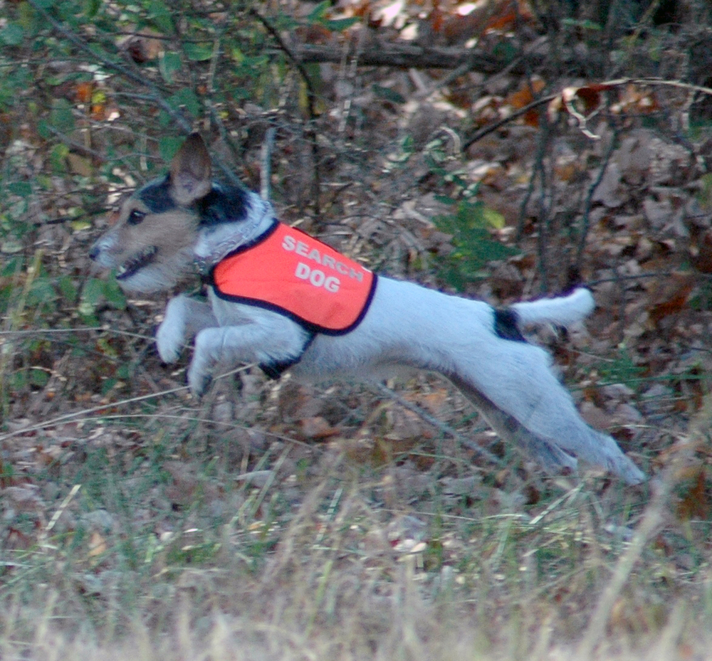Pocket Practicing Take-Off