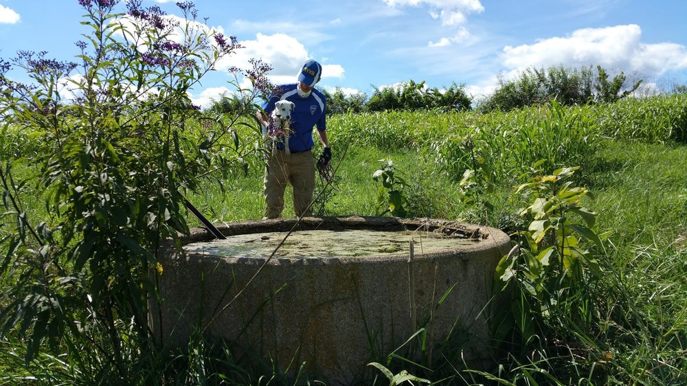 Scout checking out a cistern while searching for Bobby Jones and Crystal Warner