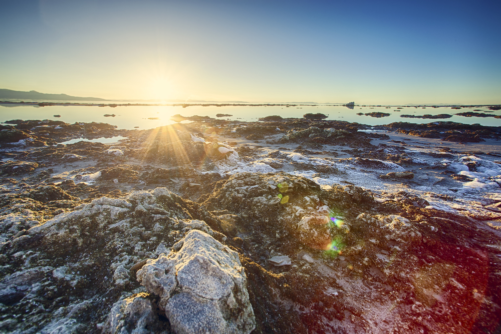 Antelope Island 2013.jpg