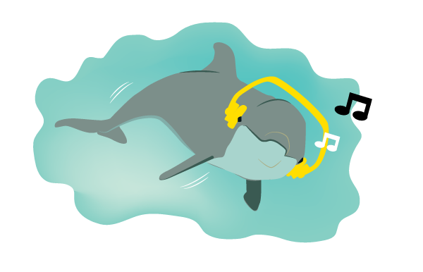 Dolphin illustration that went out in a marketing email.