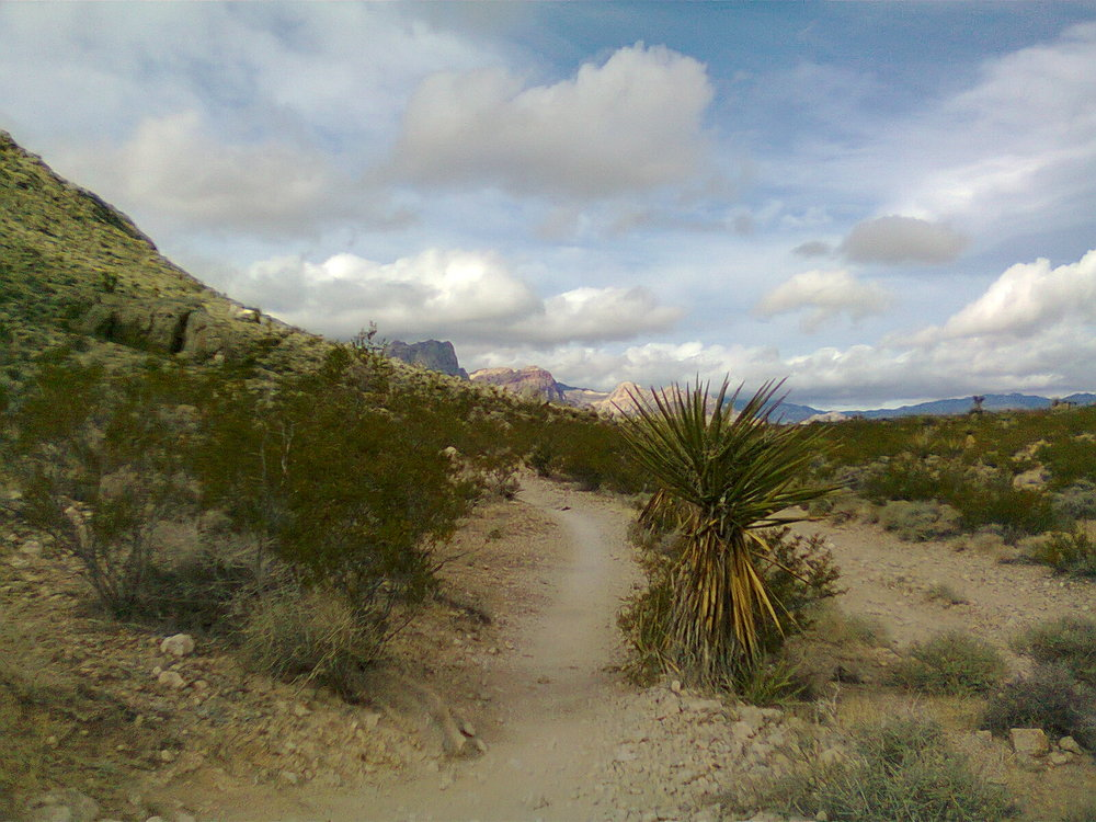 Part of the historic Old Spanish Trail (which went from California to New Mexico) that goes through what used to be a mining town near the Red Rock Canyon, about 12 miles off the Las Vegas Strip. The canyon itself has a 13-mile scenic drive with other trails for easy walks, strenuous hiking, or rock climbing. (Photo by Cris Yabes)