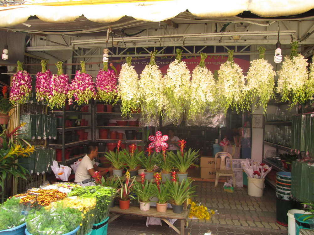 Say it with orchids:  Exotic fresh orchids from Thailand and potted plants on display.  (Photo by Dedette Sison-Santiago)