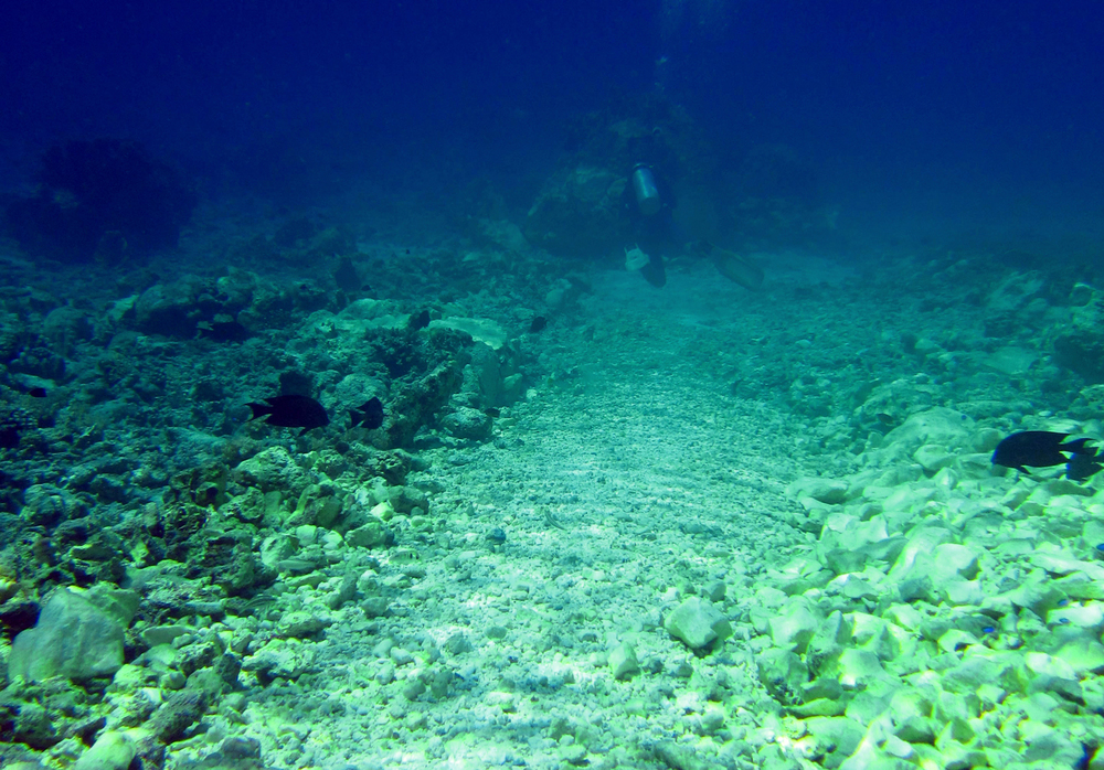 Leaving a trail of destruction, the FV Min Long Yu, 48-meter Chinese poaching vessel, obliterated 3,902 sq. meter of once-pristine reef in Tubbataha's North Atoll. The main grounding scar shown here has been termed 'The Highway of Death.' If successfully colonized by algae, coral recruits will have a difficult time resettling. (Photo by Gregg Yan)