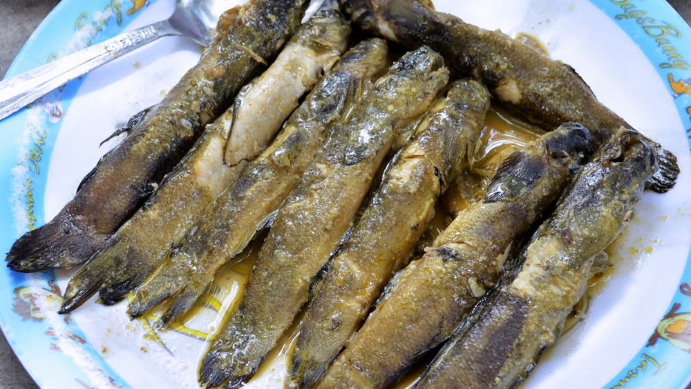 Palileng is a kind of river fish abundant in Abra.  (Source: pinakbetrepublic.blospot.com, photo by Roy Varagon)