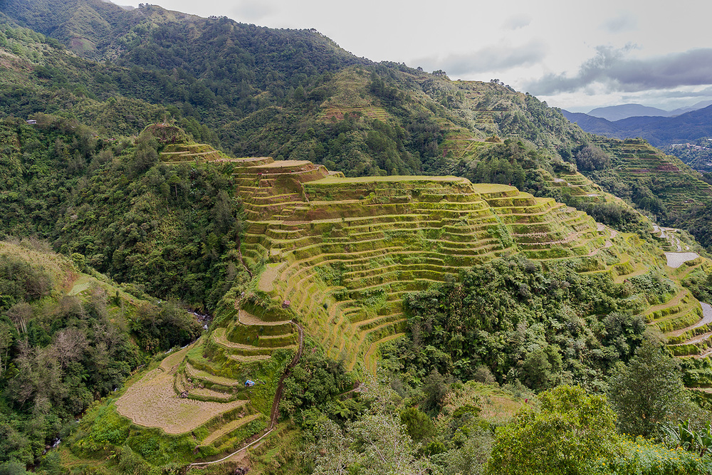 The Banaue Rice Terraces in Benguet (Source: Wikimedia Commons)