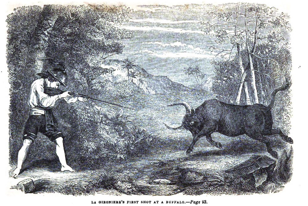 La Gironiere's first shot at a buffalo (Source: Twenty Years in the Philippines by Paul P. De La Gironiere, Harper & Brothers, 1854)