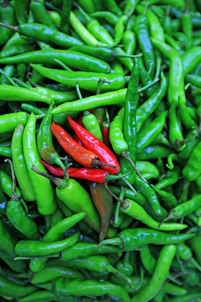 Sili  (hot pepper) (Photo by Bong Bajo)