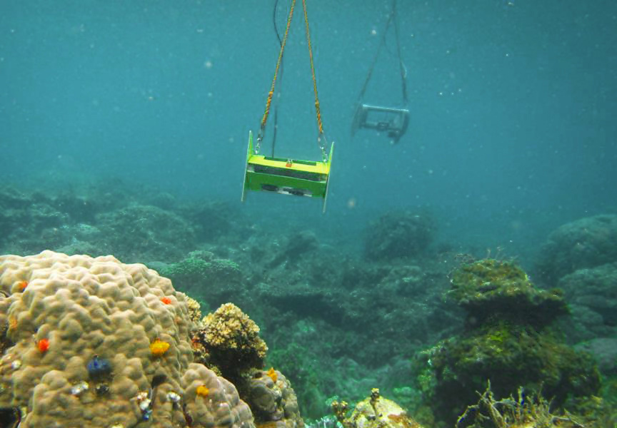 Teardrop cameras shoot six-second video clips of the seafloor, which are stitched to create a clear image of the target site. This system has been used to survey at least 22 coral reefs around the country. (Photo by ARRAS/WWF)