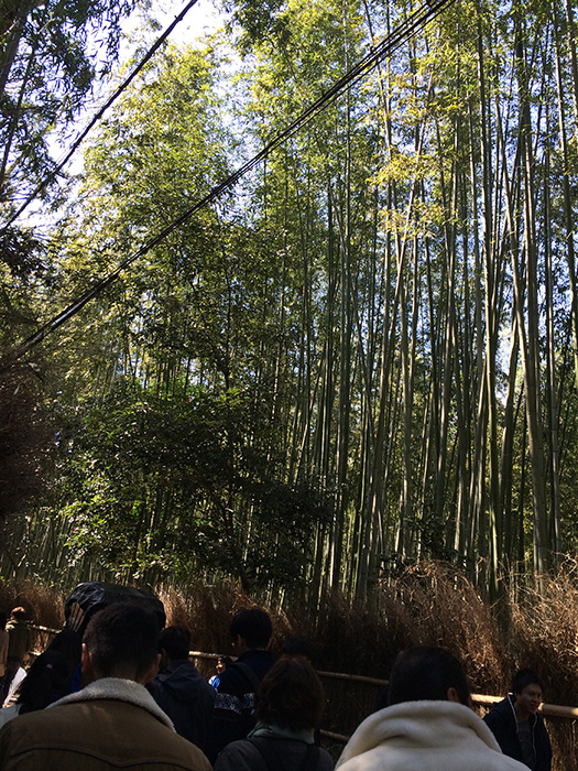 Arashiyama (Photo courtesy of Marites Vitug)