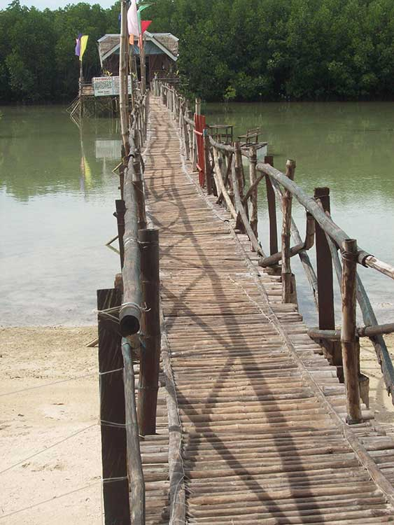 The walkway to the Mangrove Farm (Photo by Excel Dyquiangco)