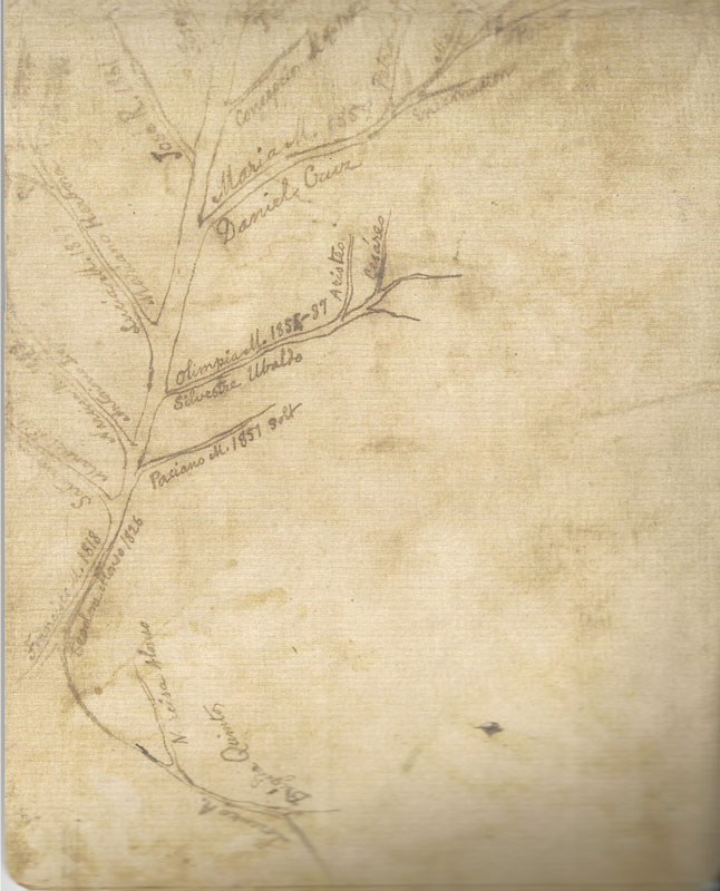 A sketch of Rizal's family tree on the envelope which covered the book (Scanned from  Jose Rizal's     Haec Est Sibylla Cumana  )