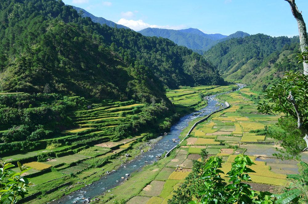The Chico River (Source: Baguio Hearld Express)