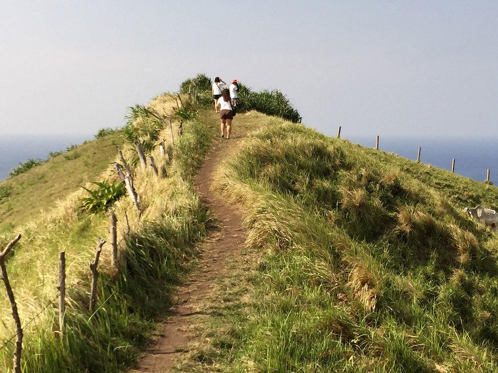 Naidi Hills (Photo by Omar Paz)