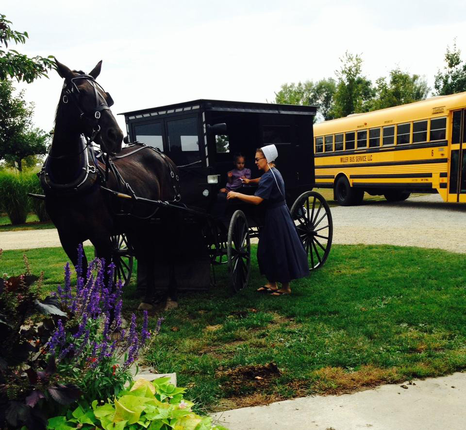 Amish woman and buggy (Photo by Gemma Nemenzo)