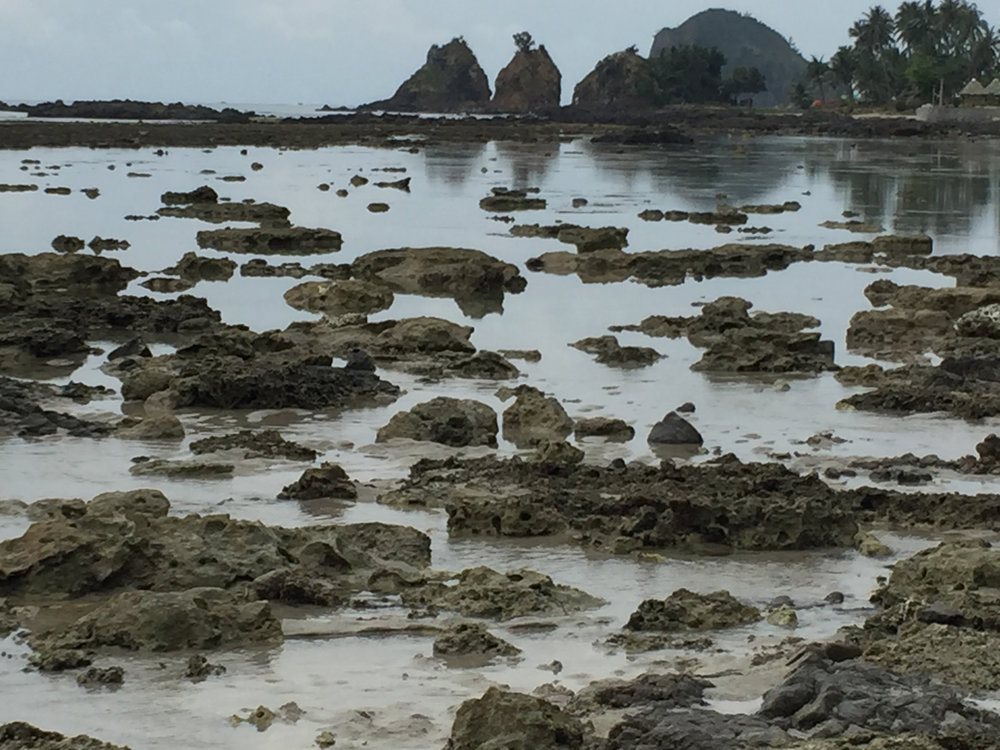 Miles of coral rock formations on the beach with Aniao Islets in the background. (Photo by Omar Paz)