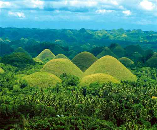 The Chocolate Hills, green in the rainy season. (Source: infoBohol.com)