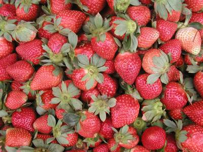 La Trinidad strawberries (Source: wikipedia)