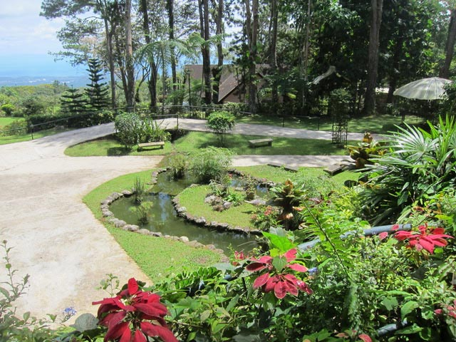 The manicured garden and pond surrounding the burial area of Fe and Chito Ayala.