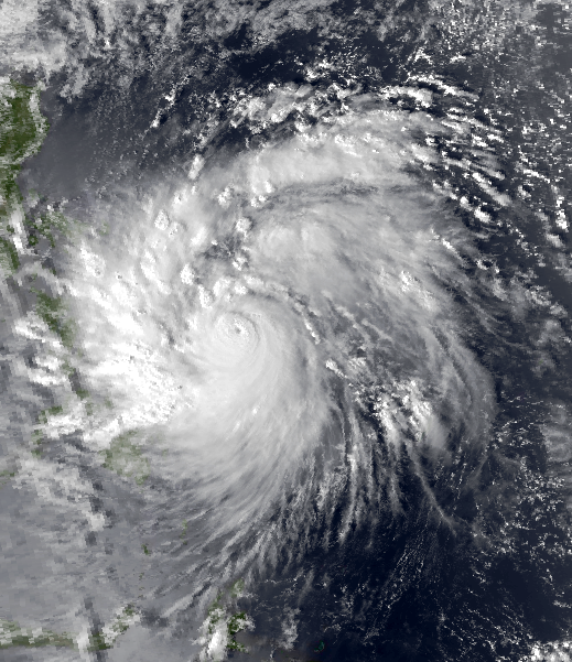 Typhoon Undang (Agnes) (Source: Wikipedia)