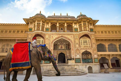 One of the iconic symbols of India, the majestic elephant, decked out festively, to take visitors up to the Amber Fort. I already did my elephant thing in Cambodia so there was no need to repeat. Besides, Tim Burton's live-action version of  Dumbo  opens this summer.