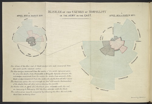 Diagram of the Causes of Mortality in the Army in the East Florence Nightingale. Notes on matters, affecting the health, efficiency and hospital administration of the British Army. London, 1858.    Copyright © The British Library