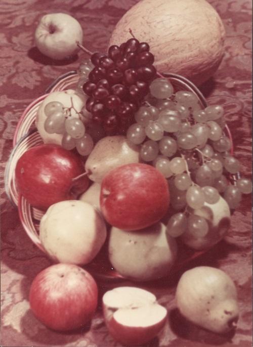 Ivan Shagin, Fruits, 1949