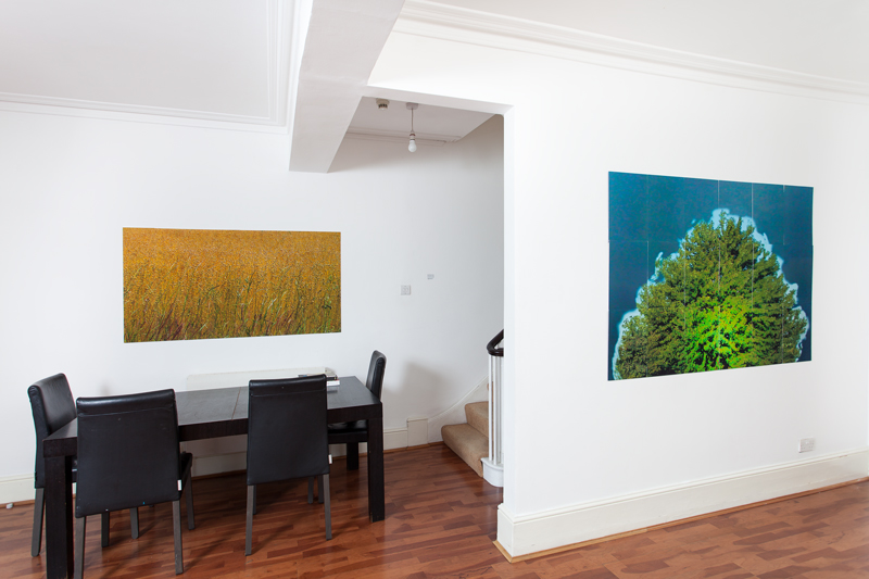 Installation 1: July Landscape - view towards Albert, 2015 and Portrait, 2015