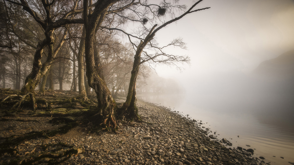 Mark Littlejohn - Aira Point in Mist, Ullswater, Cumbria, England