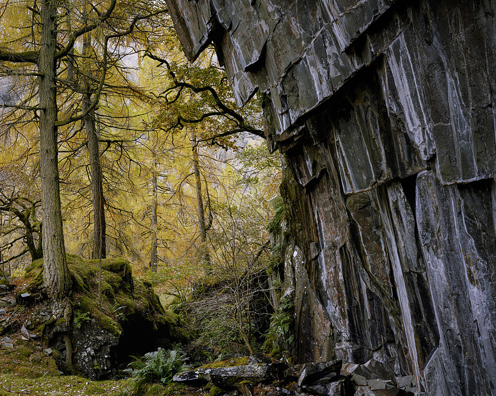 Joseph Wright - Abandoned quarry, Low Hows Wood, Borrowdale, Cumbria, England